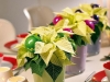 new-year-flower-home-decoration1_resize